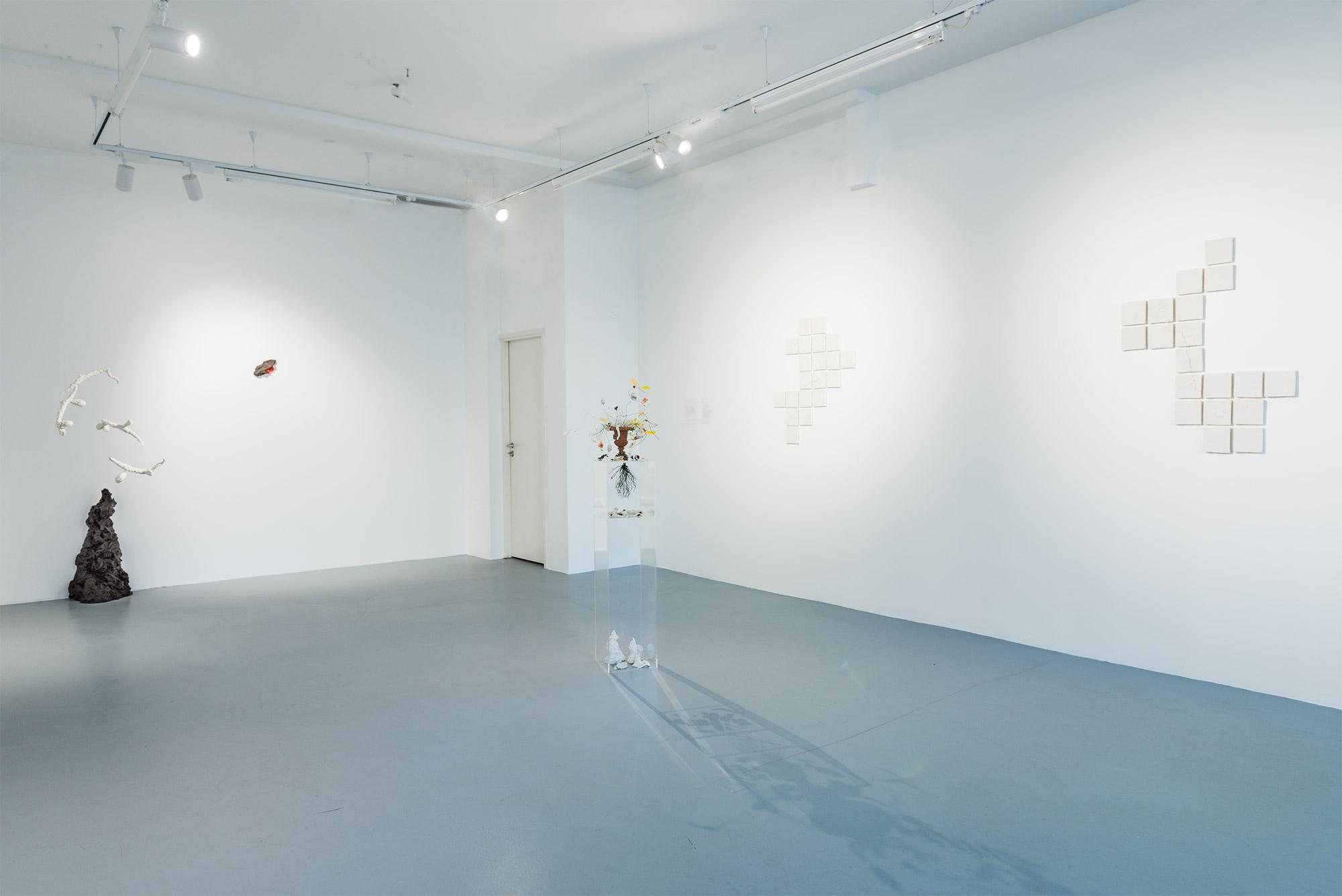 """Exhibition view: Eike Eplik """"Biomass – Ghost In the Corner"""""""